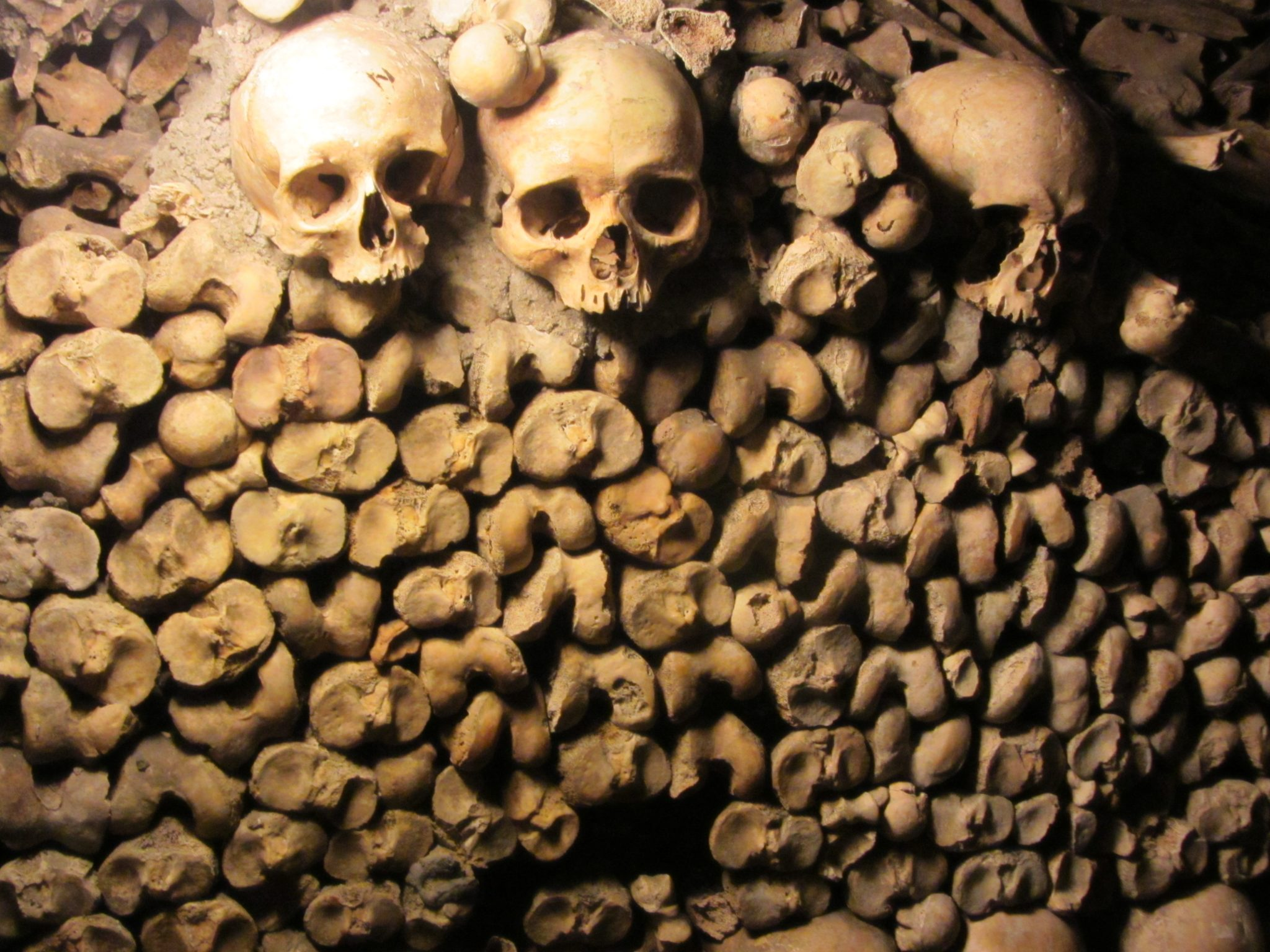 Skulls and Bones in the Catacombs in Paris
