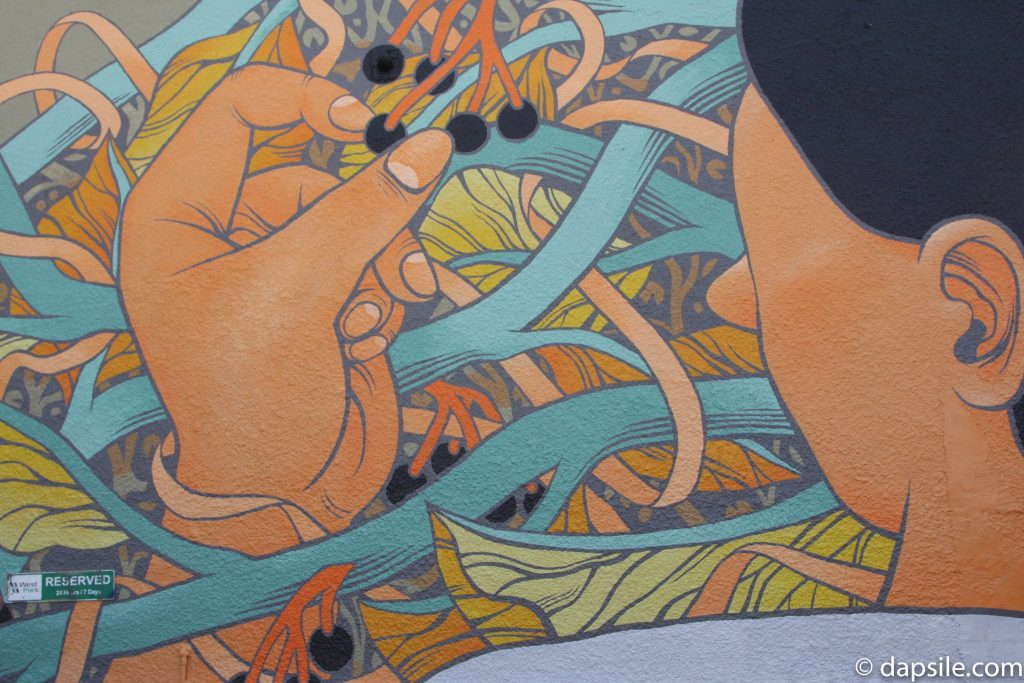 Mural Festival Vines and Plucking Summer Street Festivals in the Vancouver Area