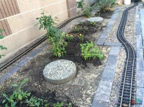 Mr. DAPs Railway Tree Removal-20