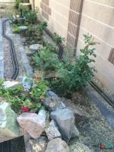 Mr. DAPs Railway Tree Removal-23