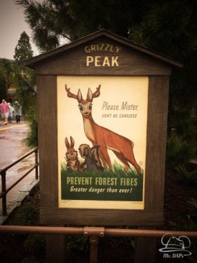 Grizzly Peak Airfield Opening Day at Disney California Adventure - May 15, 2015-28