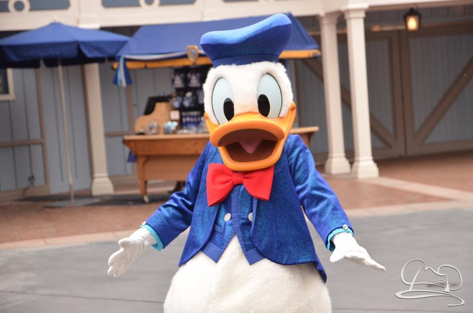 Donald Duck at Disneyland on his birthday. Photo courtesy of @Aika_mouse2737 on Instagram.