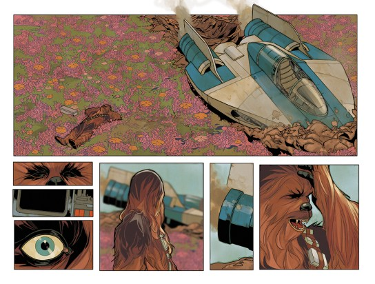Chewbacca_1_Preview_2