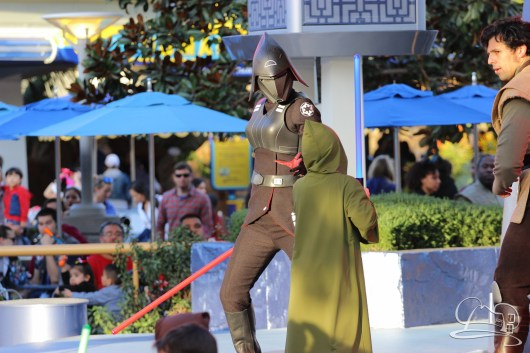 Jedi Training Trials of the Temple Disneyland-172