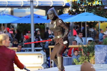 Jedi Training Trials of the Temple Disneyland-188