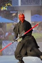 Jedi Training Trials of the Temple Disneyland-204