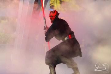 Jedi Training Trials of the Temple Disneyland-220