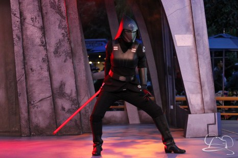 Jedi Training Trials of the Temple Disneyland-282