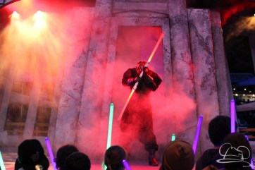 Jedi Training Trials of the Temple Disneyland-337
