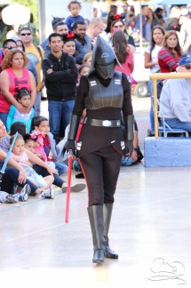 Jedi Training Trials of the Temple Disneyland-55