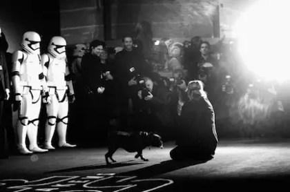 Star Wars UK Red Carpet (3)