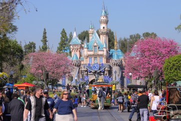 Springtime at Disneyland - February_21_2016-2