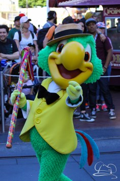 Springtime at Disneyland - February_21_2016-89