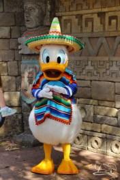 Walt Disney World - Day 1-100