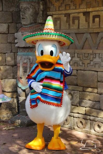 Walt Disney World - Day 1-101