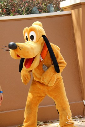 Walt Disney World - Day 1-35