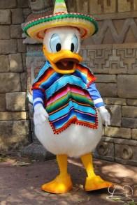 Walt Disney World - Day 1-97
