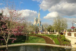 Walt Disney World Day 3 - Epcot and Magic Kingdom-51