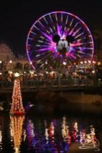 Disneyland Holidays Final Day-133