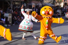 Disneyland Holidays Final Day-25
