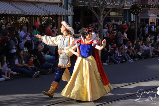 Disneyland Holidays Final Day-34