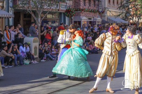 Disneyland Holidays Final Day-44