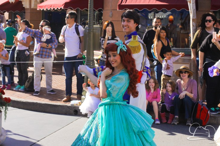 Disneyland Holidays Final Day-51