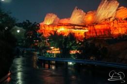 DisneylandResortRainyDay-105