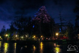 DisneylandResortRainyDay-172