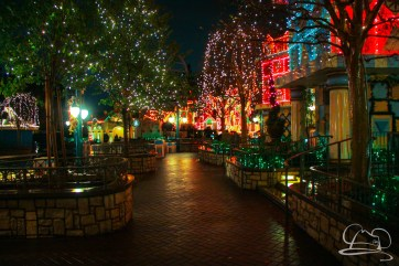 DisneylandResortRainyDay-174