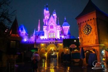 DisneylandResortRainyDay-185