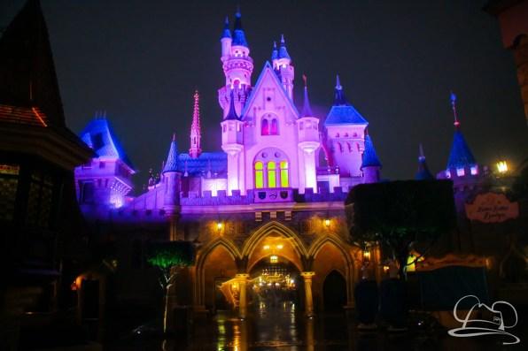 DisneylandResortRainyDay-186