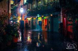 DisneylandResortRainyDay-203