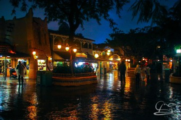 DisneylandResortRainyDay-207