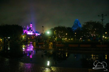 DisneylandResortRainyDay-211