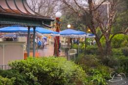 DisneylandResortRainyDay-40