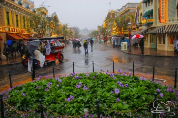 DisneylandResortRainyDay-6