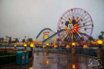 DisneylandResortRainyDay-62