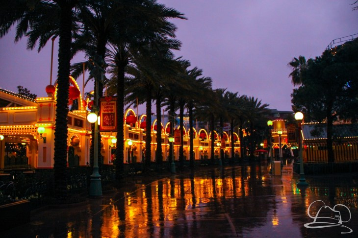 DisneylandResortRainyDay-78