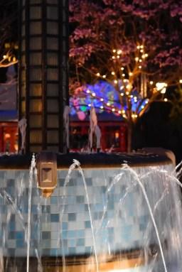 DisneylandSpring 8