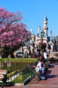 DisneylandSpringtime 2