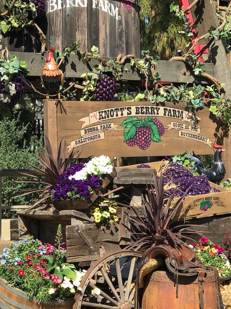 Knott's Boysenberry Festival to Return for Expanded Days
