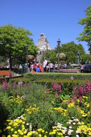 DisneylandResortSundayMay212017-6