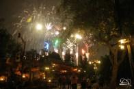 Disneyland-165
