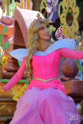 Disneyland_Updates_Sundays_With_DAPs-44