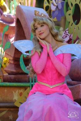 Disneyland_Updates_Sundays_With_DAPs-45