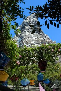 Disneyland_Updates_Sundays_With_DAPs-7