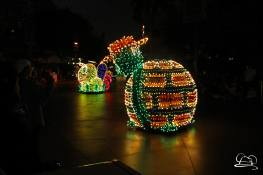 Final Main Street Electrical Parade-48