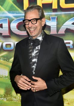 "HOLLYWOOD, CA - OCTOBER 10: Actor Jeff Goldblum at The World Premiere of Marvel Studios' ""Thor: Ragnarok"" at the El Capitan Theatre on October 10, 2017 in Hollywood, California. (Photo by Alberto E. Rodriguez/Getty Images for Disney) *** Local Caption *** Jeff Goldblum"