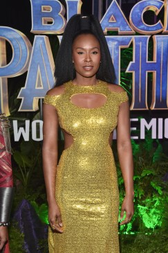 HOLLYWOOD, CA - JANUARY 29: Actor Sydelle Noel at the Los Angeles World Premiere of Marvel Studios' BLACK PANTHER at Dolby Theatre on January 29, 2018 in Hollywood, California. (Photo by Alberto E. Rodriguez/Getty Images for Disney) *** Local Caption *** Sydelle Noel